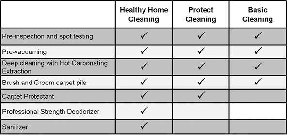 Carpet Sanitizer Amp Protectant Chem Dry Of Medina